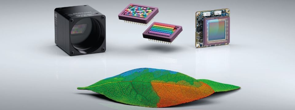 Hyperspectral cameras - xiSpec