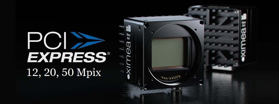 High resolution cameras with PCIe Gen2 - xiB