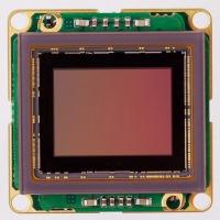 Sony IMX255 USB3 color board level camera