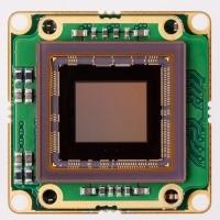 Sony IMX250 USB3 color board level camera