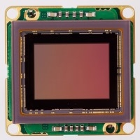 Sony IMX255 USB3 color board level camera