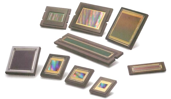 A picture illustrating CCD, CMOS and sCMOS sensors on a white background